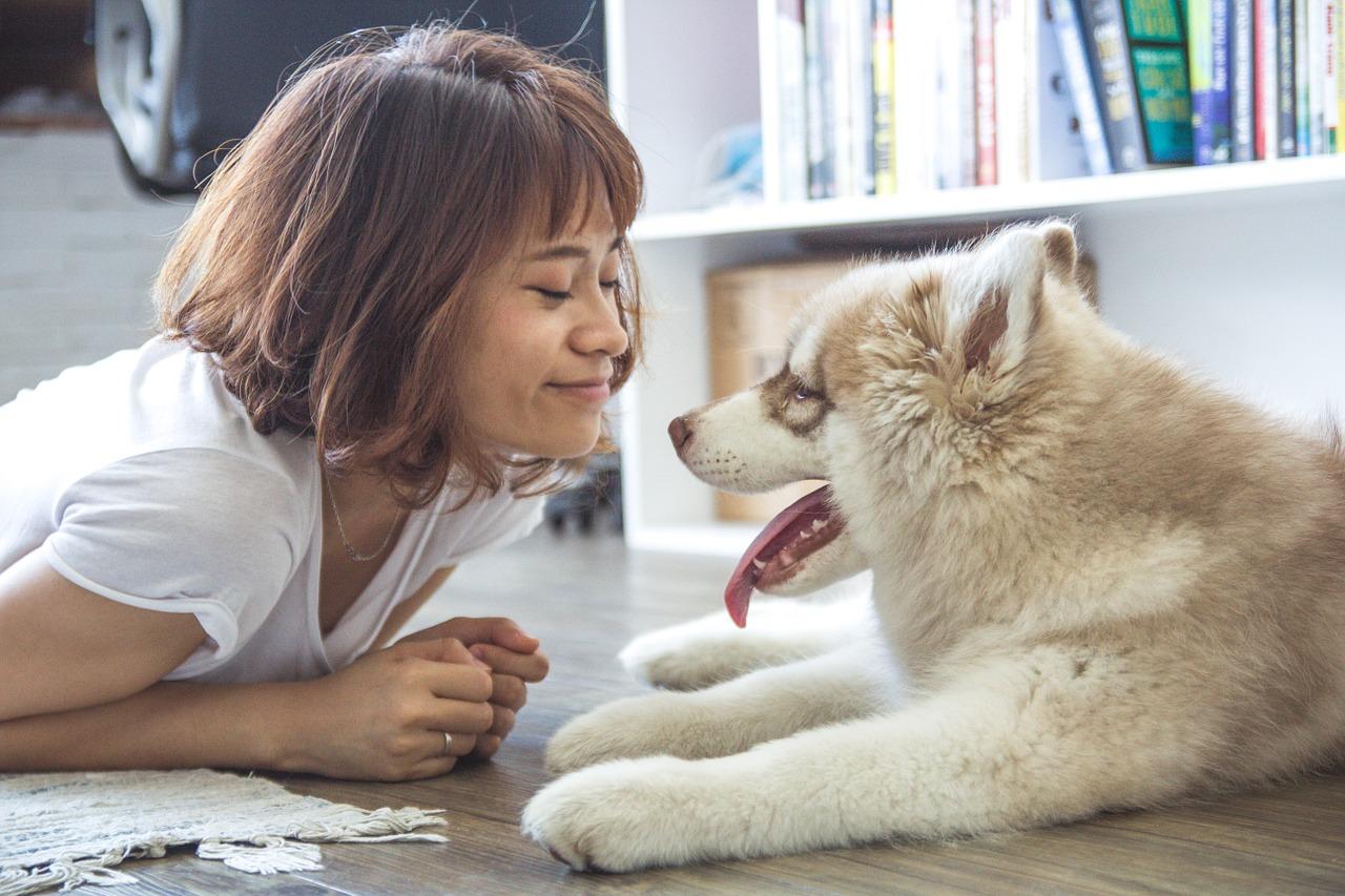 Im Dialog mit deinem Hund. Die Tierflüsterin Heike Geißler